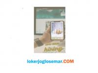 Lowongan Kerja Semarang Terbaru Content Creator TikTok di Lurapure