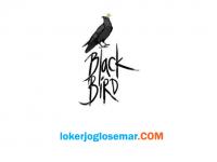 Lowongan Kerja Solo Koki di Black Bird Coffee Shop