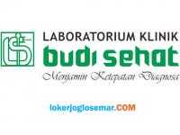 Loker Solo Front Office Laboratorium Budi Sehat